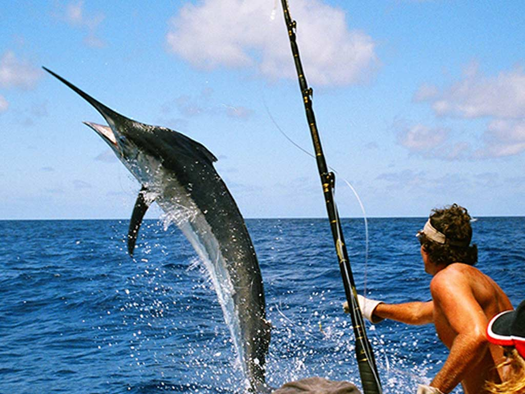 Sportsfishing Manuel Antonio