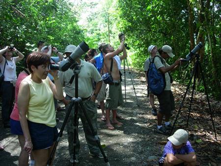 Manuel Antonio National Park Tours